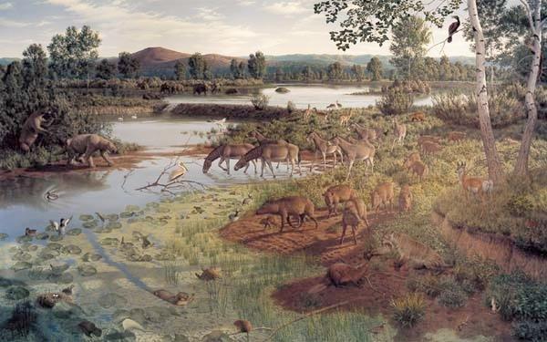 Pliocene Remembered!